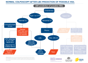 Normal colp after LBC prediction of possible HSIL.png
