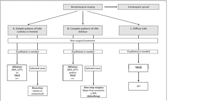 Treatment approach liver metastases with extra-hepatic spread.jpg