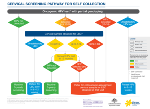 Cervical screening pathway for self collection.PNG