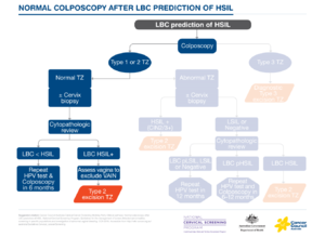 Normal colp after LBC prediction of HSIL.png